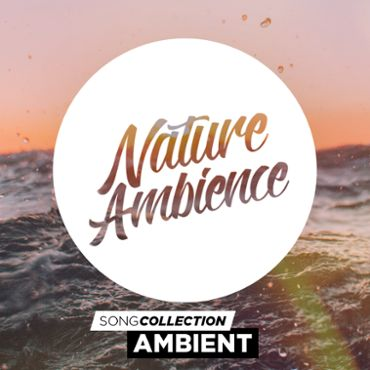 Nature Ambience