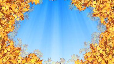 Sunny Autumn Sky