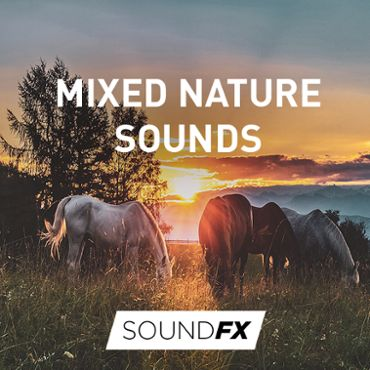 Mixed Nature Sounds