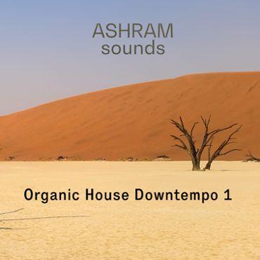 Organic House Downtempo 1