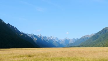 Fiordland Park