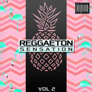 Reggaeton Sensation Vol 2