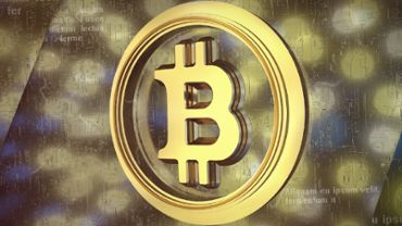 Bitcoin Reveal  4