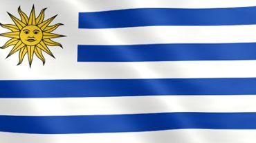 Animierte Flagge von Uruguay