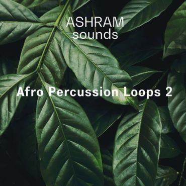 Afro Percussion Loops 2