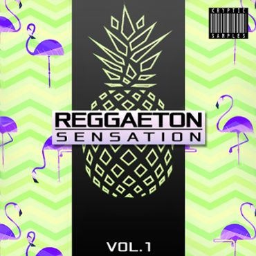 Reggaeton Sensation Vol 1