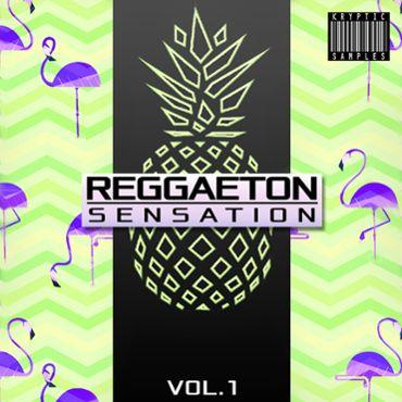 Reggaeton Sensation Vol 1