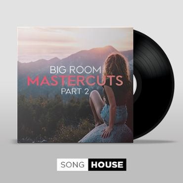 Big Room Mastercuts - Part 2