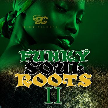 Funky Soul Roots 2
