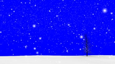 Snow Tree blue screen