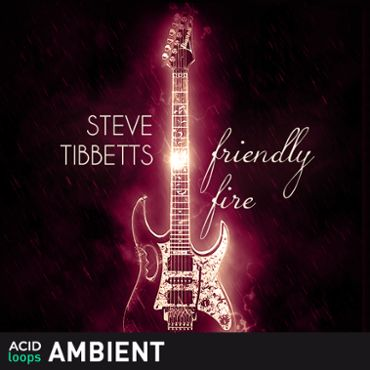Steve Tibbets - Friendly Fire