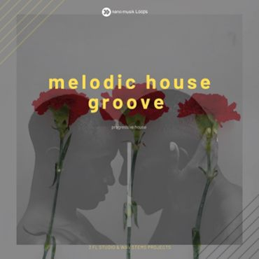 Melodic House Groove