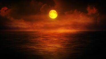Moonlight Dusk