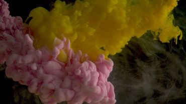 Pink and yellow ink underwater