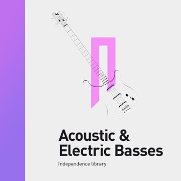 Acoustic & Electric Basses