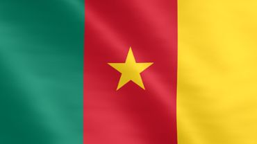 Animated flag of Cameroon