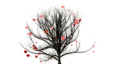 Hearts on a tree