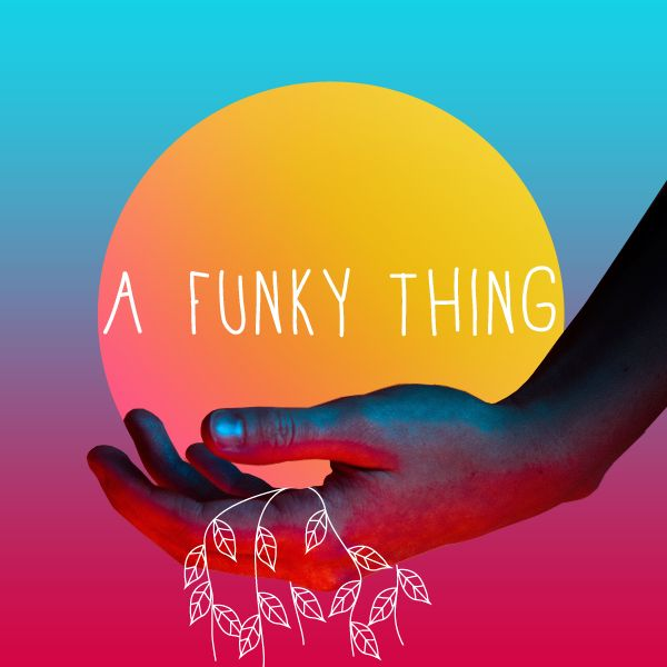 A Funky Thing