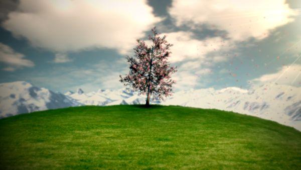 HD Frühlingsbaum