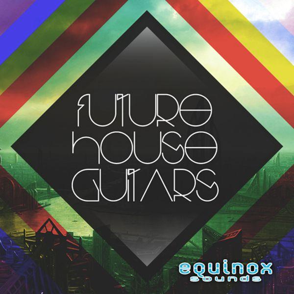 Future House Guitars