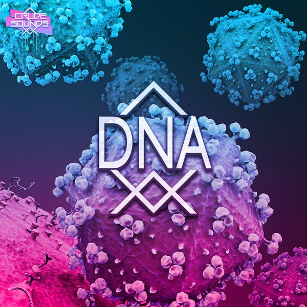 Crude Sounds: DNA