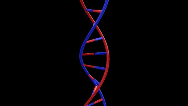 DNA Animation HD 3