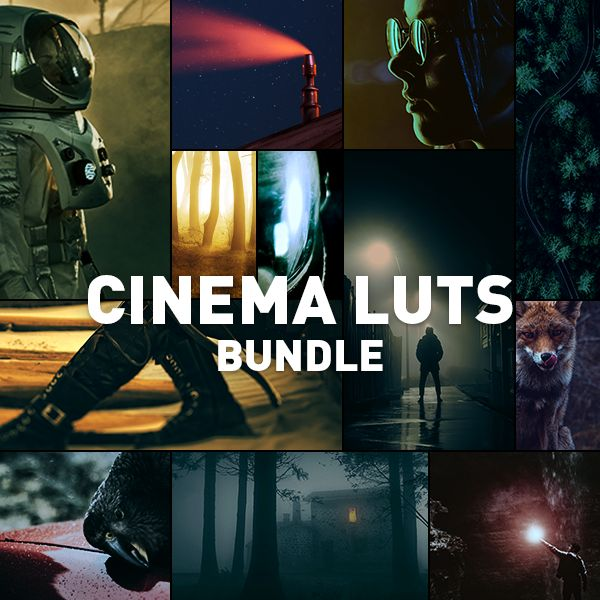 Cinema LUTs Bundle