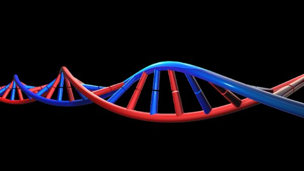 DNA Animation HD