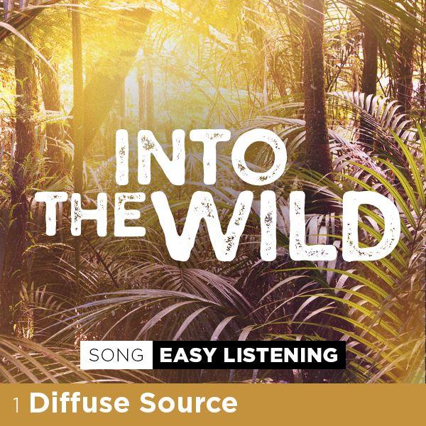 Diffuse Source