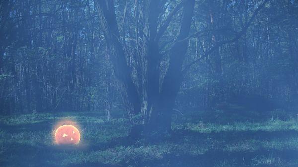 Halloween Background Loop 01