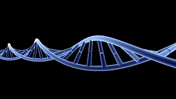 DNA Animation HD 2