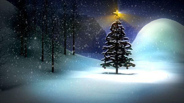 HD Winterlichtung loop