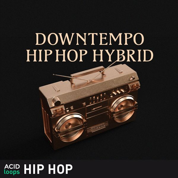 Downtempo Hip Hop Hybrid