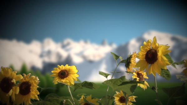 Alpen im Sommer (HD)