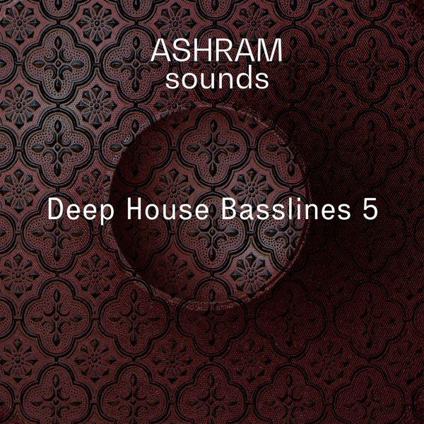Deep House Basslines 5