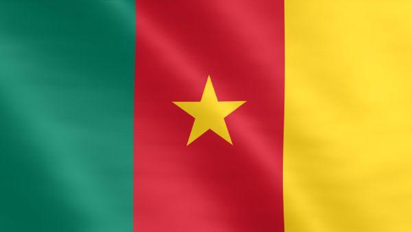 Animierte Flagge von Kamerun