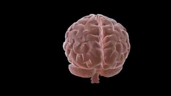 Brain Spin 2