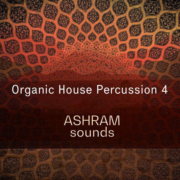 Organic House Percussion 4