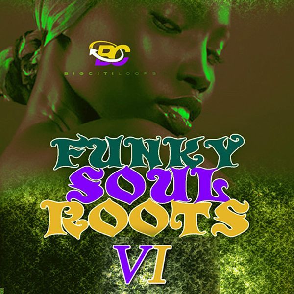 Funky Soul Roots 6